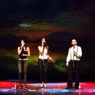 "Slavonski Brod, 2014. 5. međunarodni festival harmonike ""Bela pl. Panthy"""